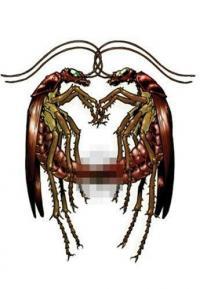Exterminators vol 3 Lies of Our Fathers