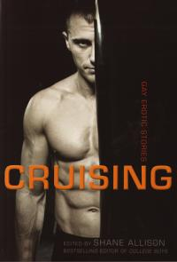 Cruising Gay Erotic Stories