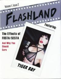 Flashland #1.2 Featuring Tiger Bay