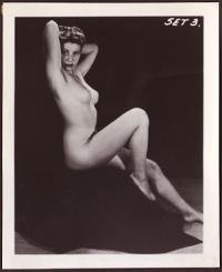 Tasteful Vintage Nude Photograph (Grab Bag)