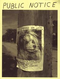 Public Notice Zine