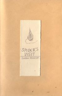 Spiders Visit