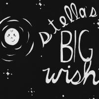Stella's Big Wish