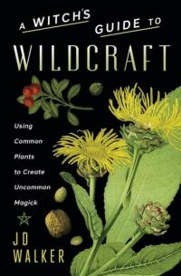 Witch's Guide to Wildcraft: Using Common Plants to Create Uncommon Magick