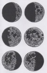 Moon Zine