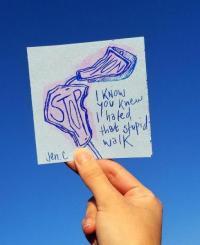 I Know You Knew I Hated That Stupid Walk Zine
